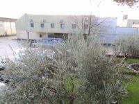 prato_carcere_visita_sui_luoghi_di_lavoro_043
