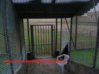 foto_carcere_vigevano_015